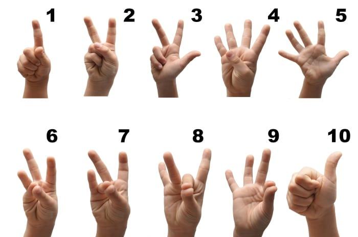 טווח ציוני האיכות האפשריים הם בין 1 ל - 10